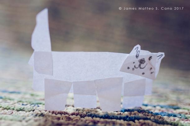 bulldog_jamesmatteocano